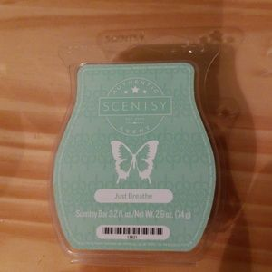 Other - Scentsy